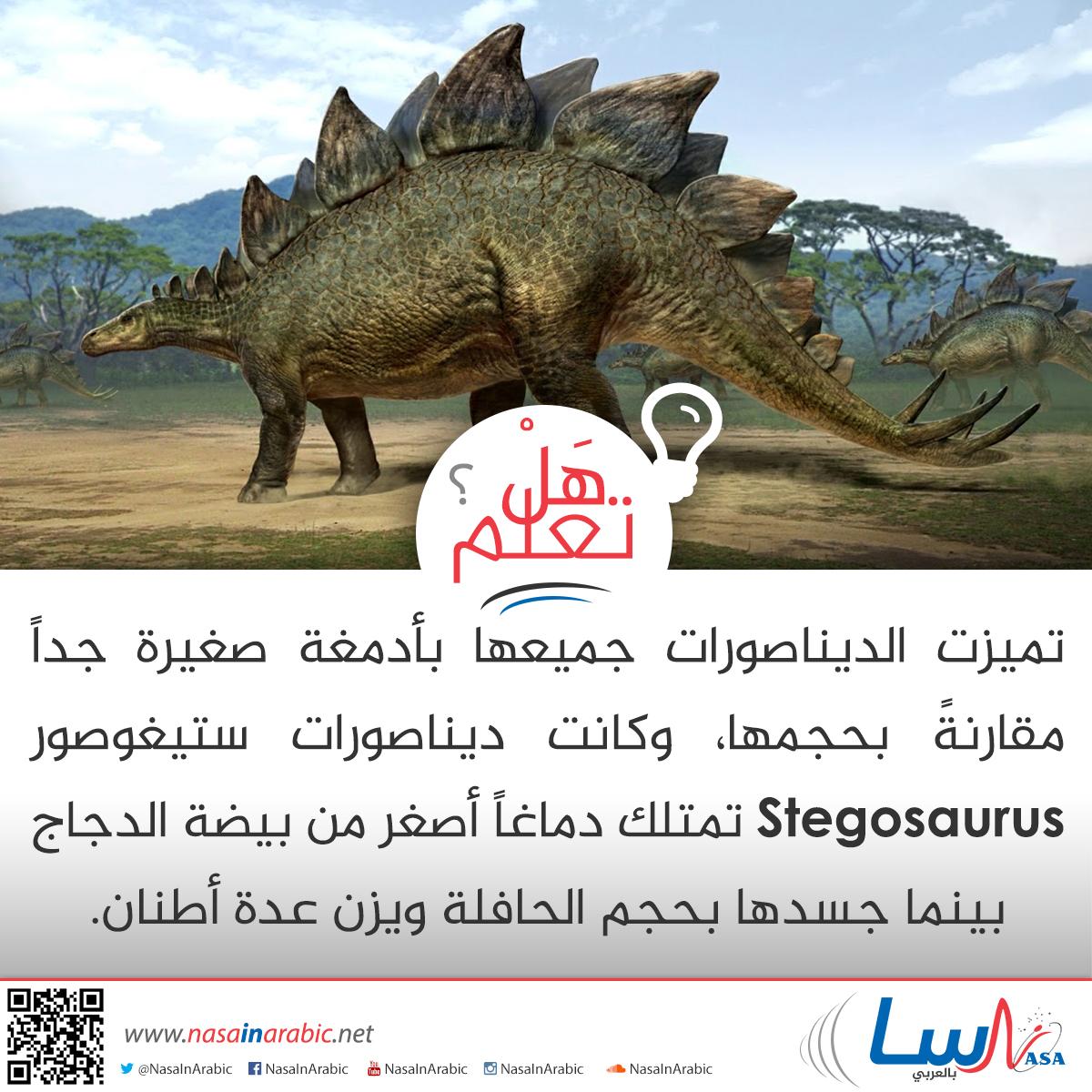 أدمغة الديناصورات