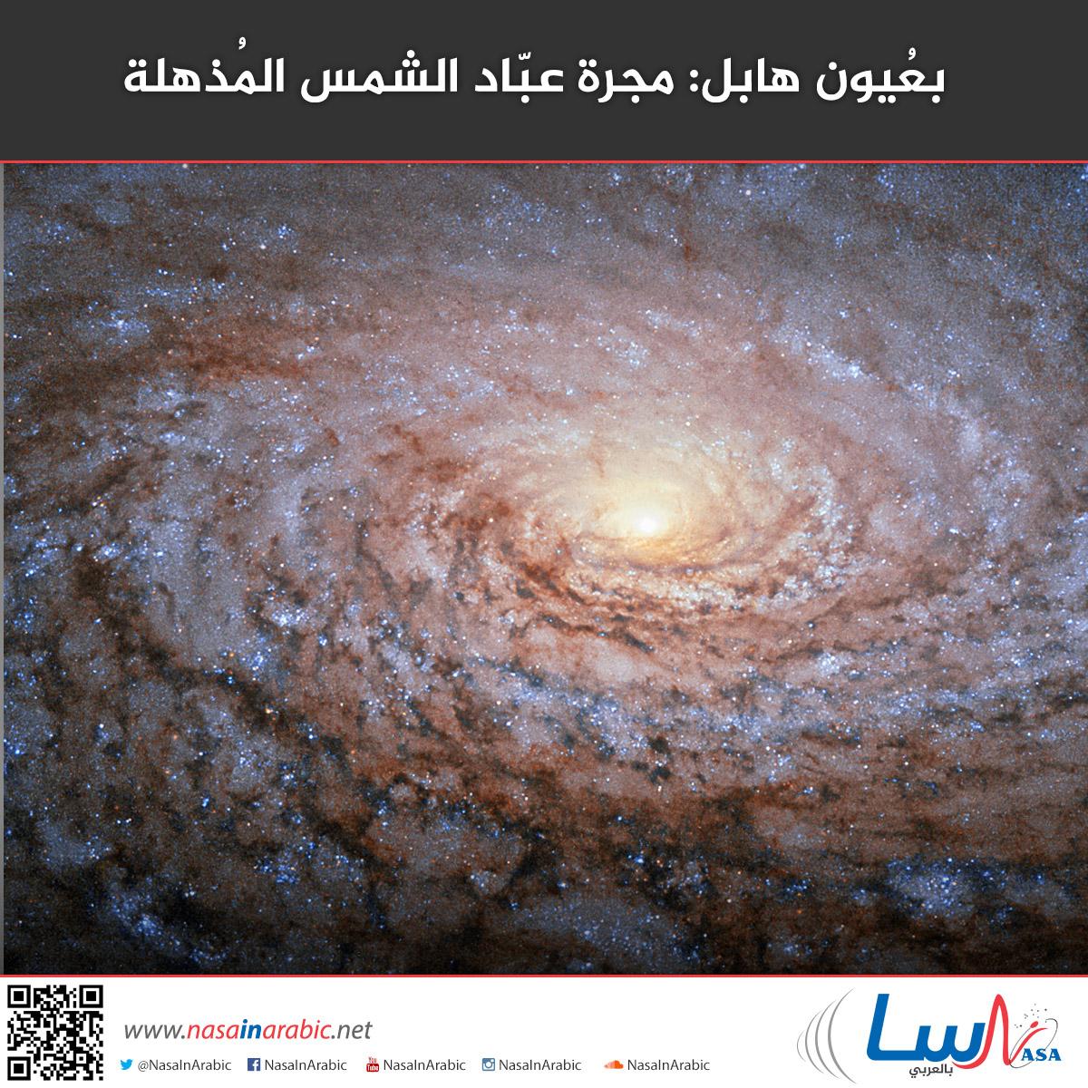 بعُيون هابل: مجرة عبّاد الشمس المُذهلة