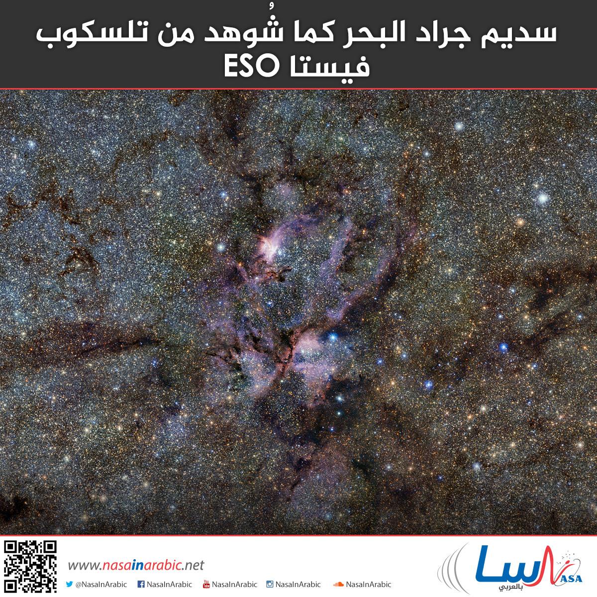 سديم جراد البحر كما شُوهد من تلسكوب فيستا ESO