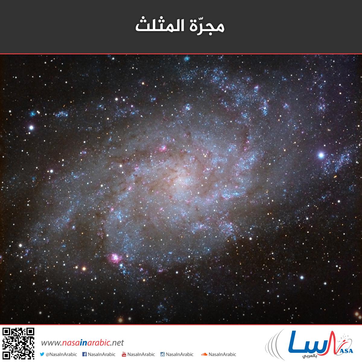 مجرة المثلث