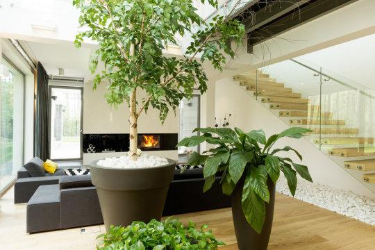 كيف نحصل على بيئة نظيفة وهواء نقي داخل المباني المغلقة؟