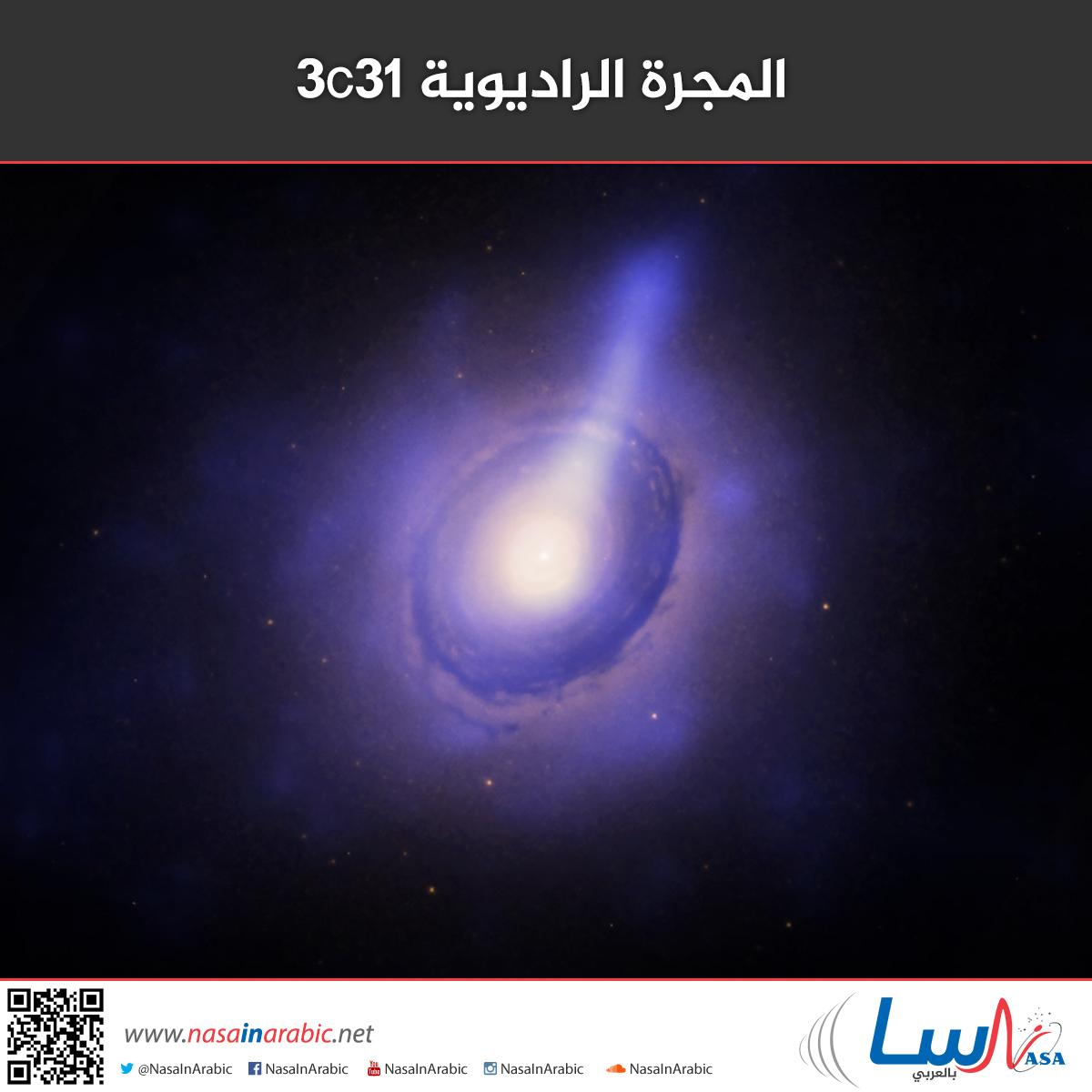 المجرة الراديوية 3C31