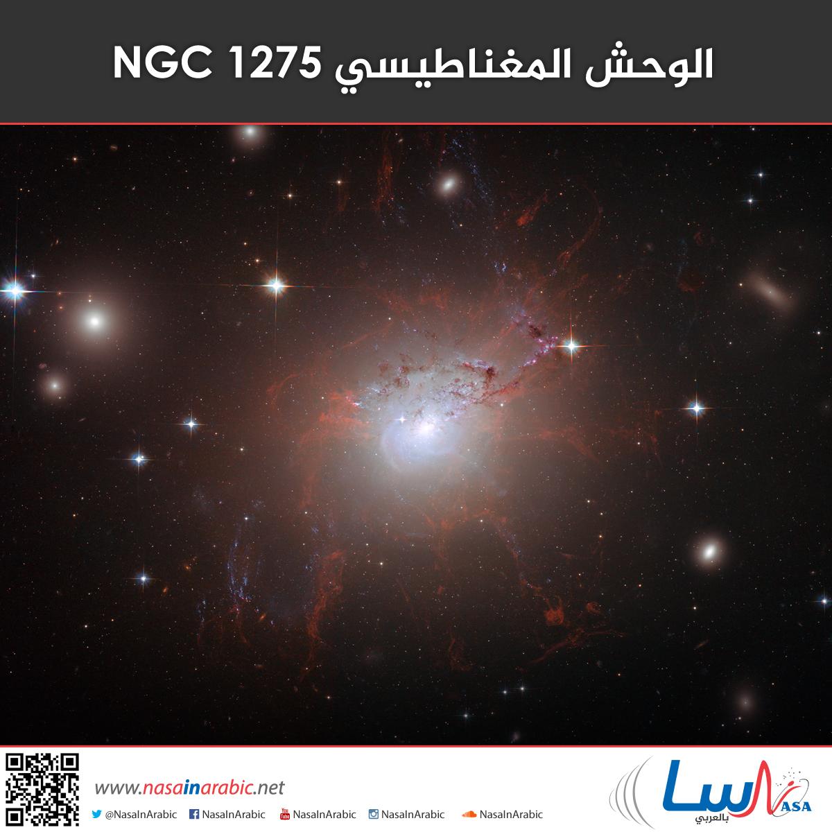 الوحش المغناطيسي NGC 1275