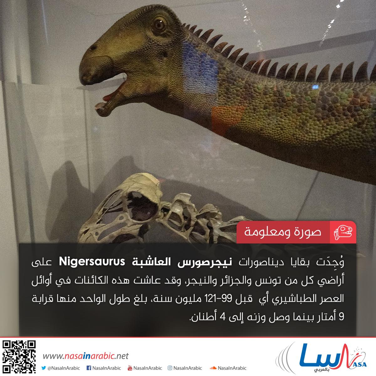 نيجرصورس Nigersaurus
