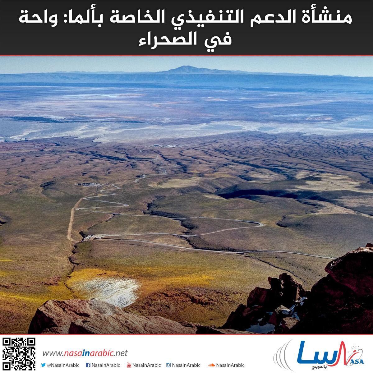 منشأة الدعم التنفيذي الخاصة بألما: واحة في الصحراء