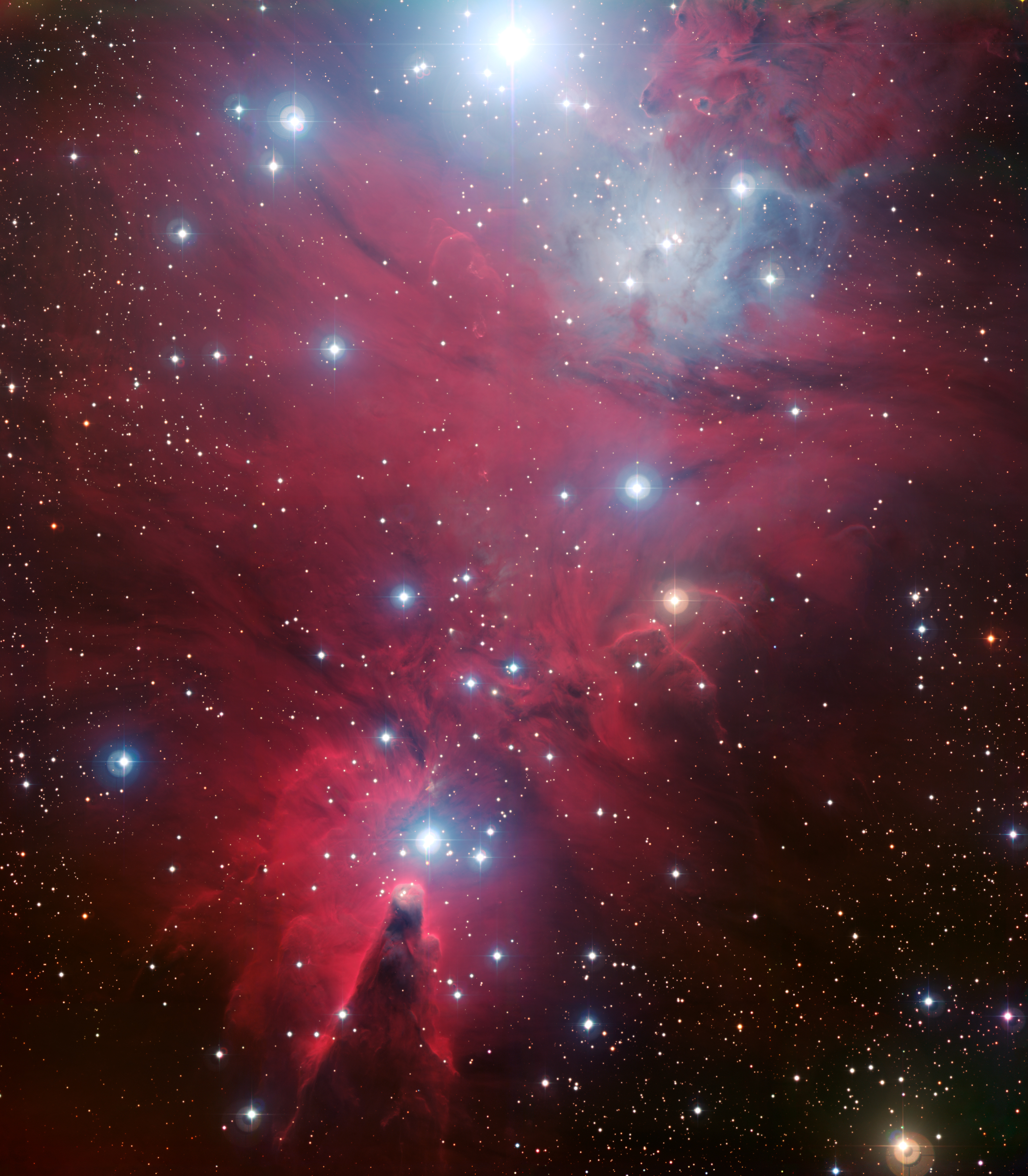 NGC 2264 وعنقود شجرة الميلاد
