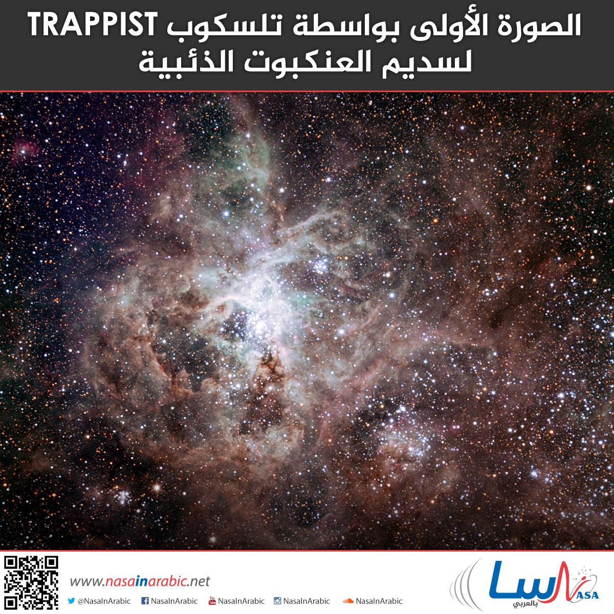 الصورة الأولى بواسطة تلسكوب TRAPPIST لسديم العنكبوت الذئبية