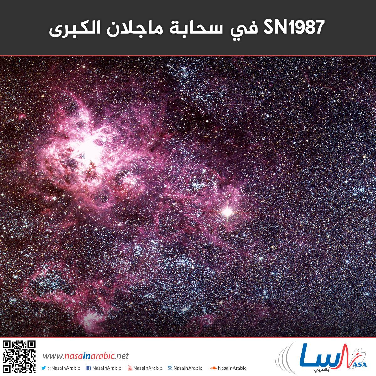 SN1987 في سحابة ماجلان الكبرى