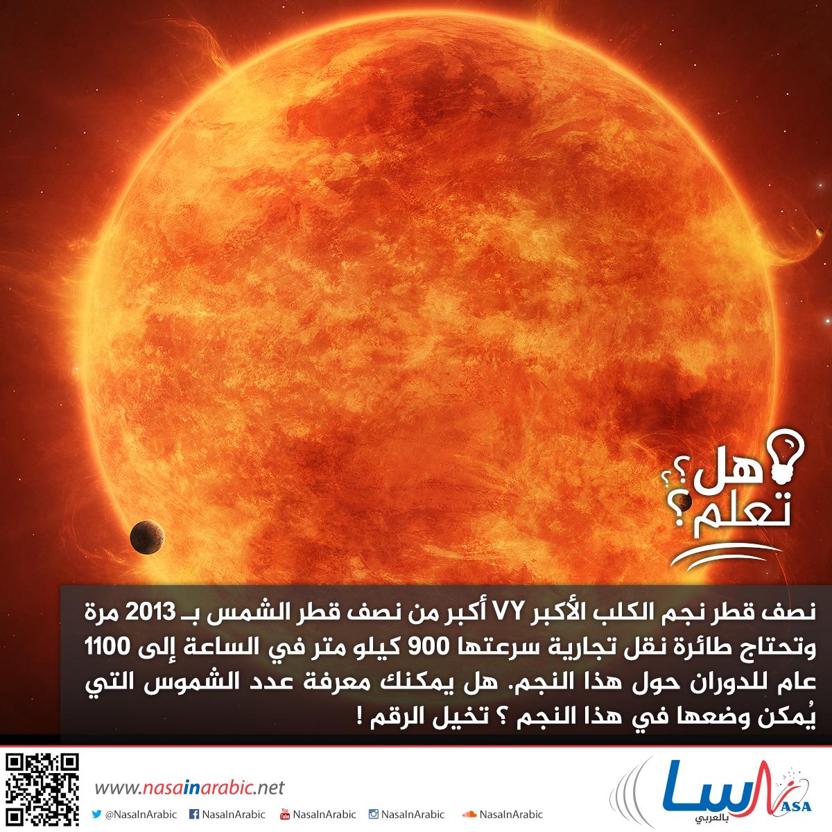 قطر نجم الكلب الأكبر