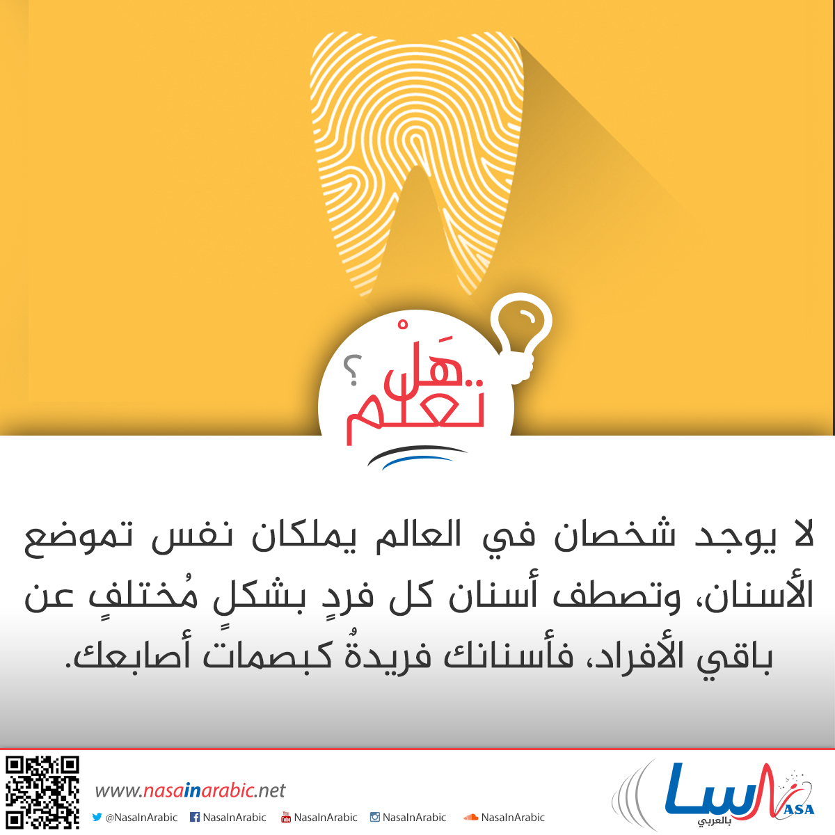 الأسنان كالبصمات