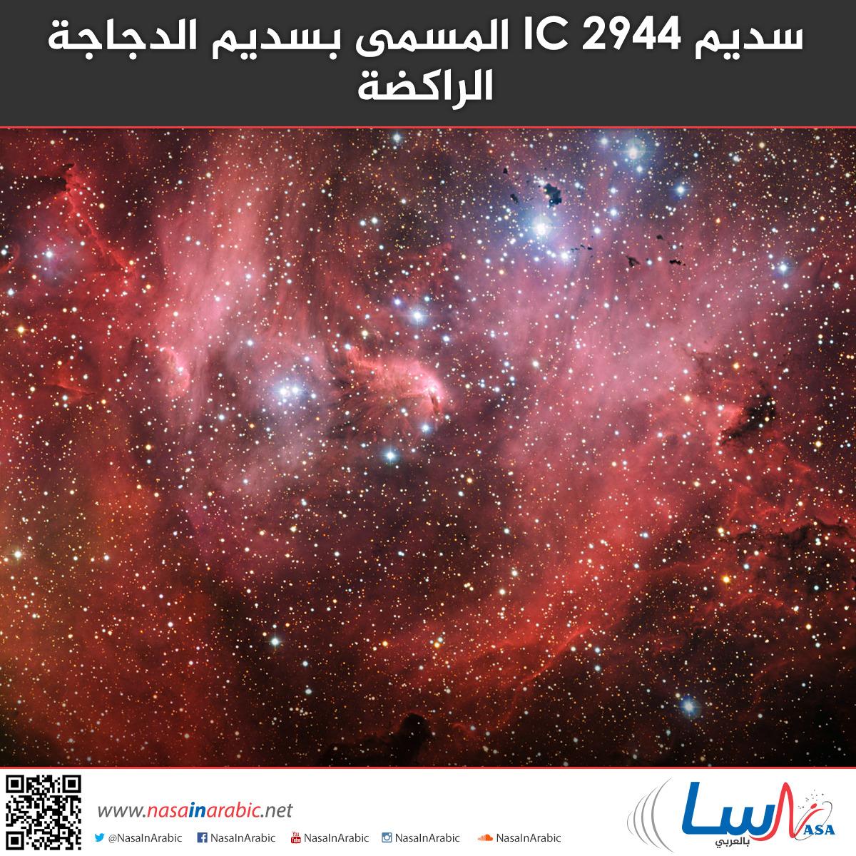 سديم IC 2944 المسمى بسديم الدجاجة الراكضة
