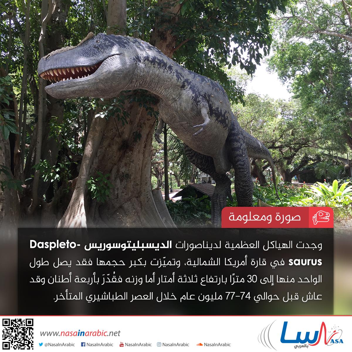 الديسبليتوسوريس Daspletosaurus