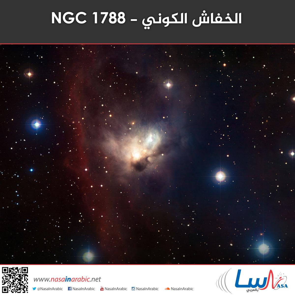 الخفاش الكوني - NGC 1788
