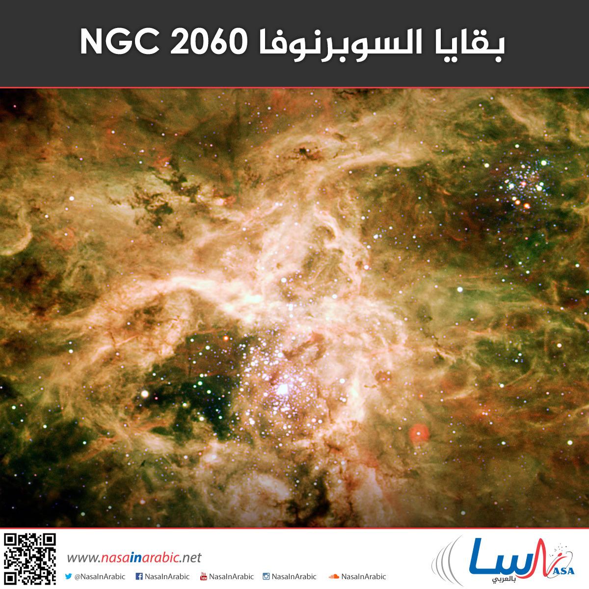 بقايا السوبرنوفا NGC 2060