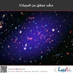 حشد عملاق من المجرات!