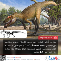 تورفوصورس Torvosaurus