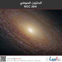 الحلزون الصوفي NGC 2841
