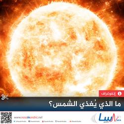 ما الذي يغذي الشمس؟