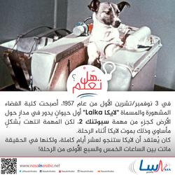 الكلبة لايكا أول كلبة انطلقت إلى الفضاء