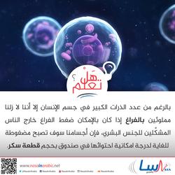 عدد الذرات في جسم الإنسان