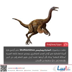 الستراذيومايمس Struthiomimus