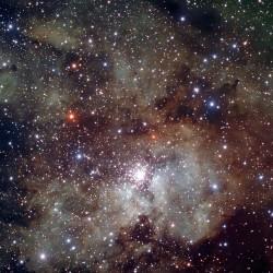 الحاضنة النجمية NGC 3630