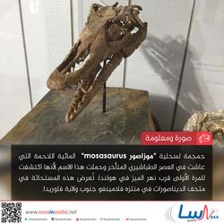 موزاصور Mosasaurus