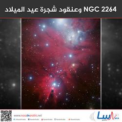 NGC 2264 وعنقود شجرة عيد الميلاد