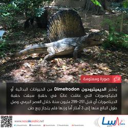 الديميترودون Dimetrodon