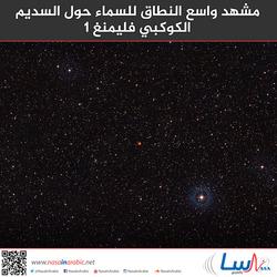 مشهد واسع النطاق للسماء حول السديم الكوكبي فليمنغ 1