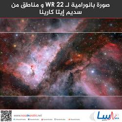 صورة بانورامية لـ WR 22 و مناطق من سديم إيتا كارينا