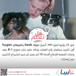 دزيك Dezik وتصيغان Tsygan أول كلبين يسافران إلى الفضاء
