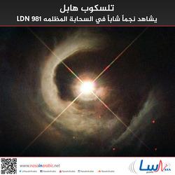 تلسكوب هابل يشاهد نجماً شاباً في السحابة المظلمه LDN 981