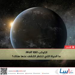 الكوكب Wolf 1061: ما الحياة التي تنتظر الكشف عنها هناك؟