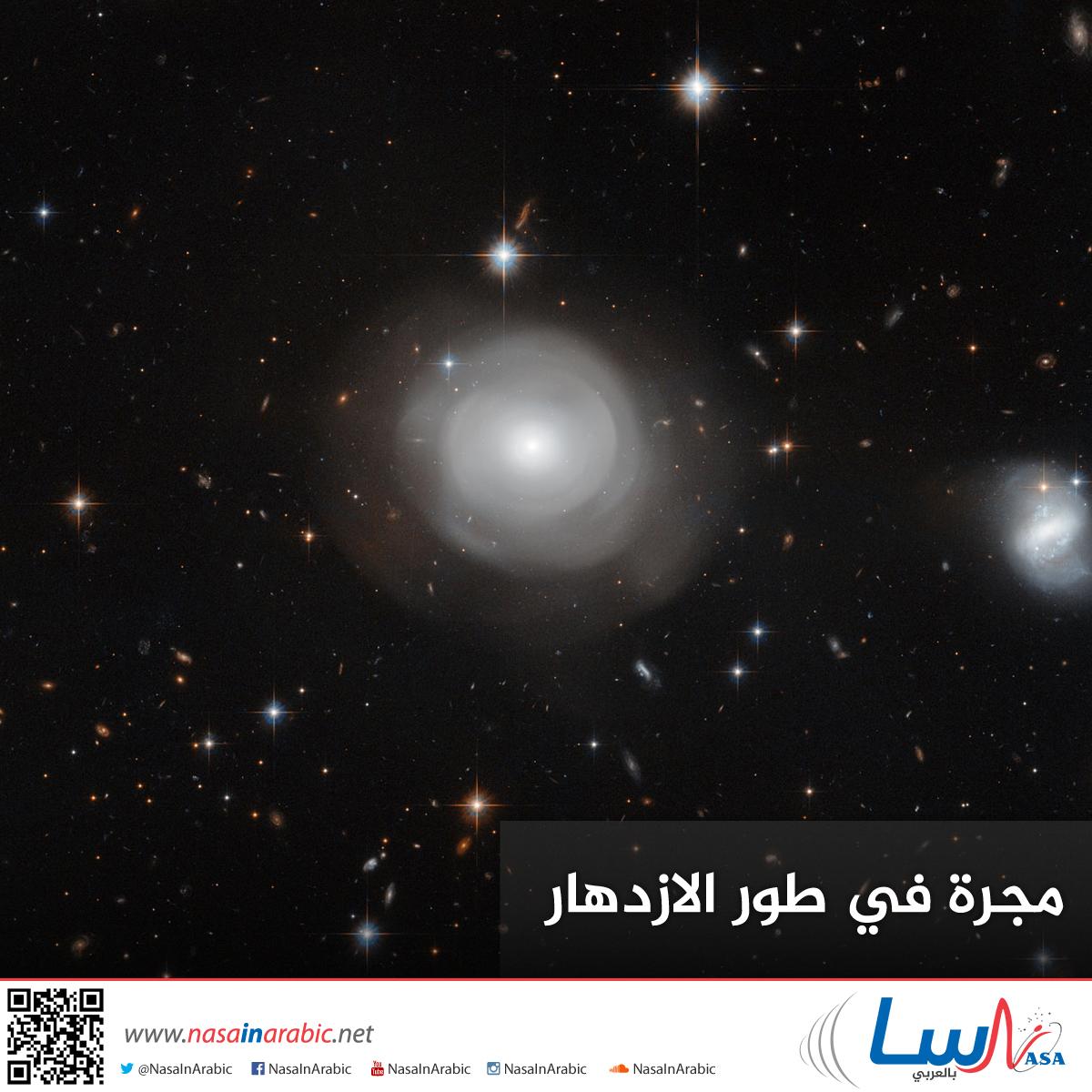 مجرة في طور الازدهار
