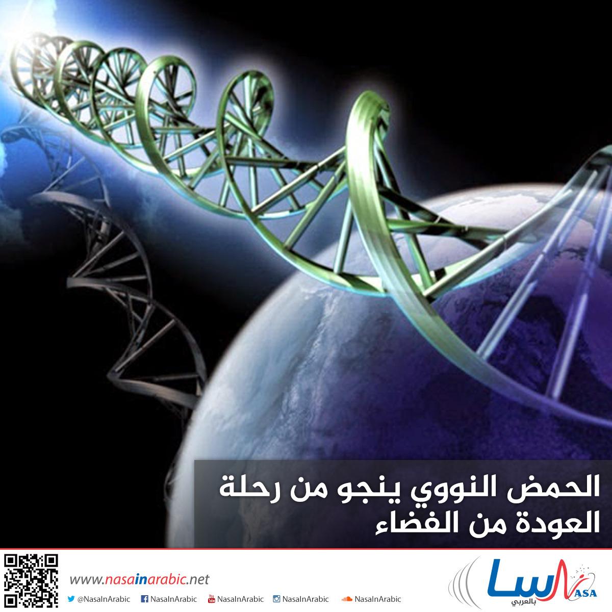 الحمض النووي ينجو من رحلة العودة من الفضاء