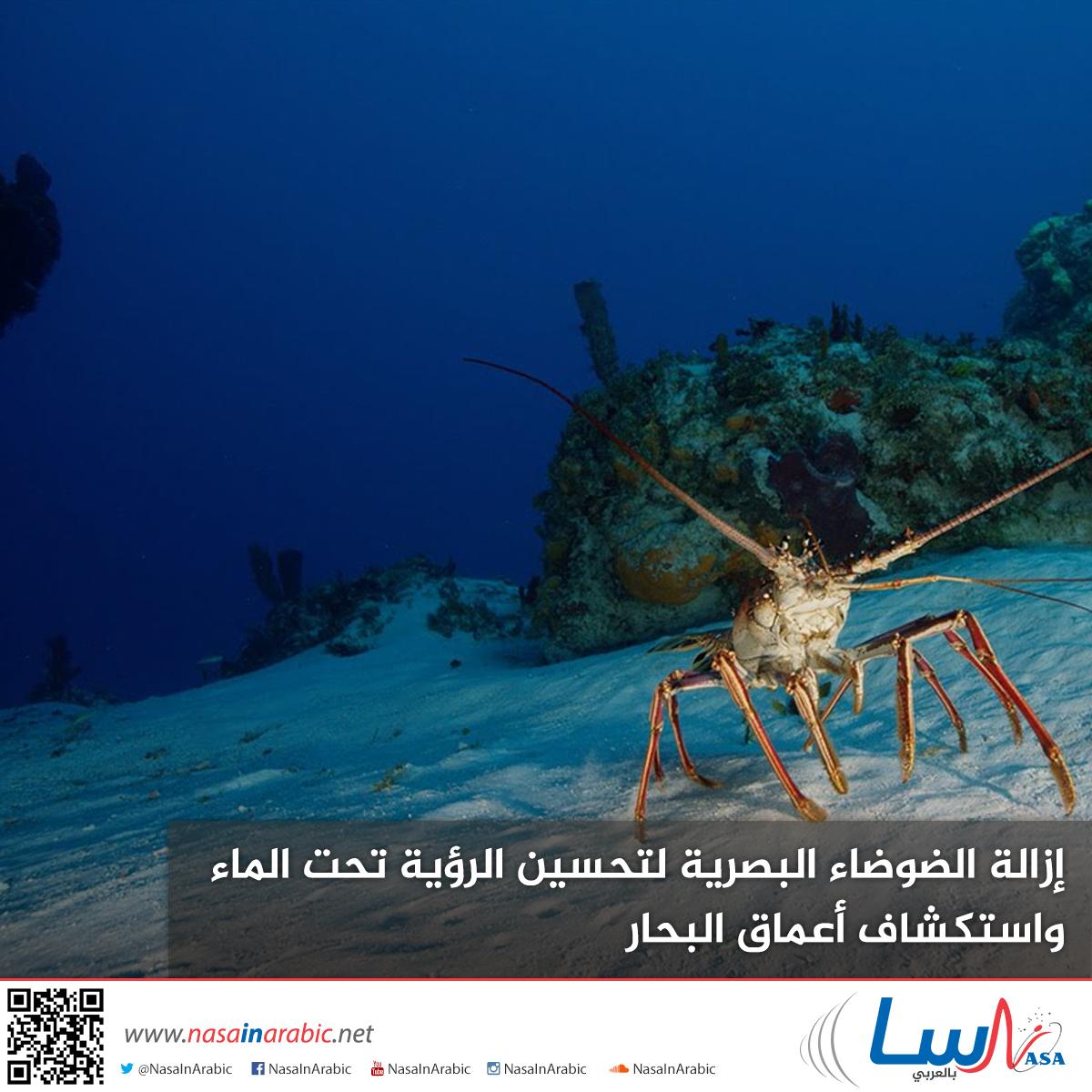 إزالة الضوضاء البصرية لتحسين الرؤية تحت الماء واستكشاف أعماق البحار