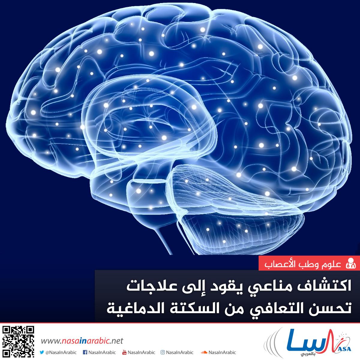 اكتشاف مناعي يقود إلى علاجات تحسن التعافي من السكتة الدماغية