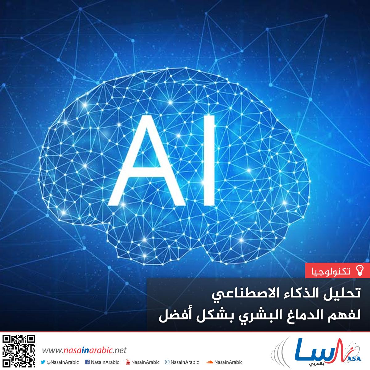 تحليل الذكاء الاصطناعي لفهم الدماغ البشري بشكل أفضل