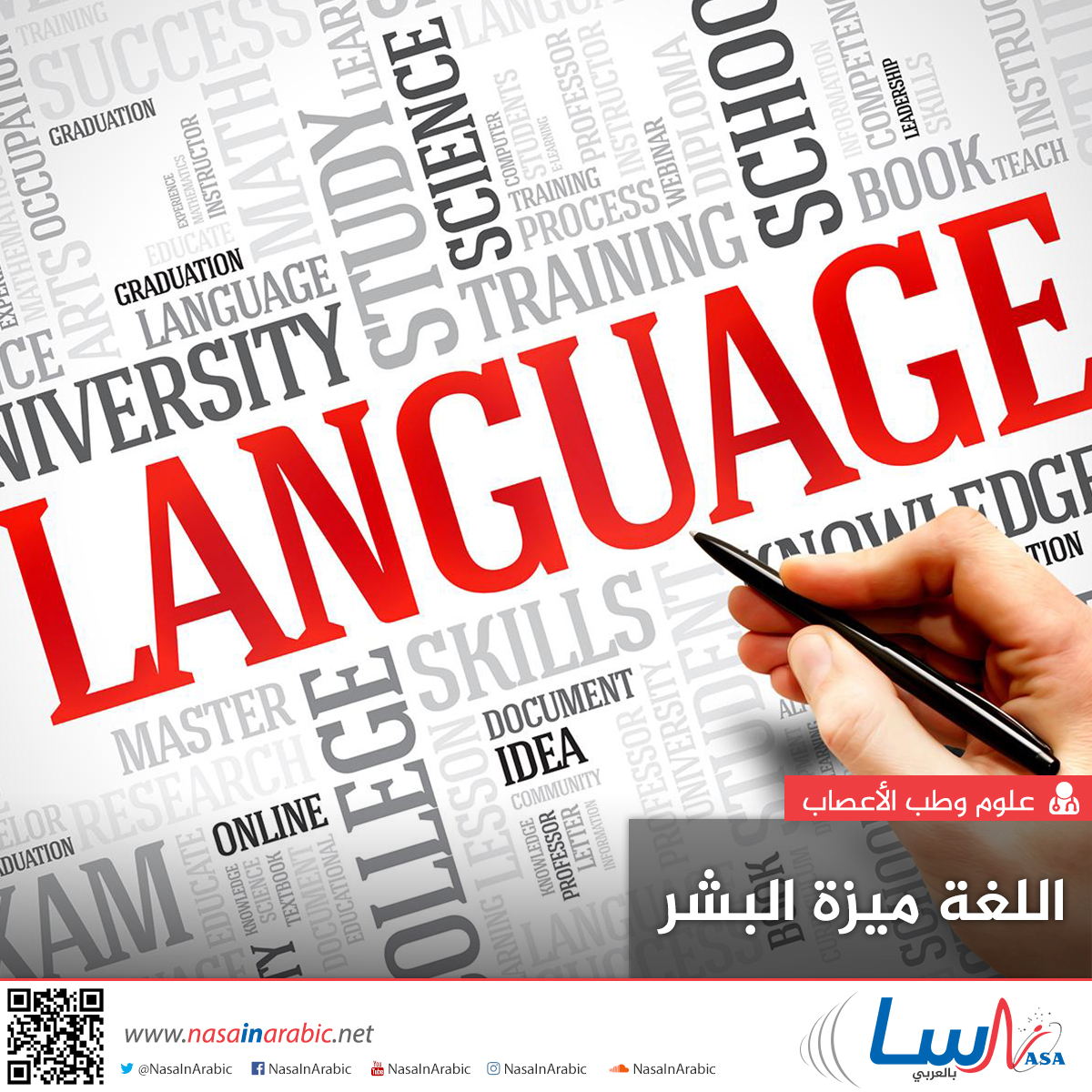 اللغة ميزة البشر