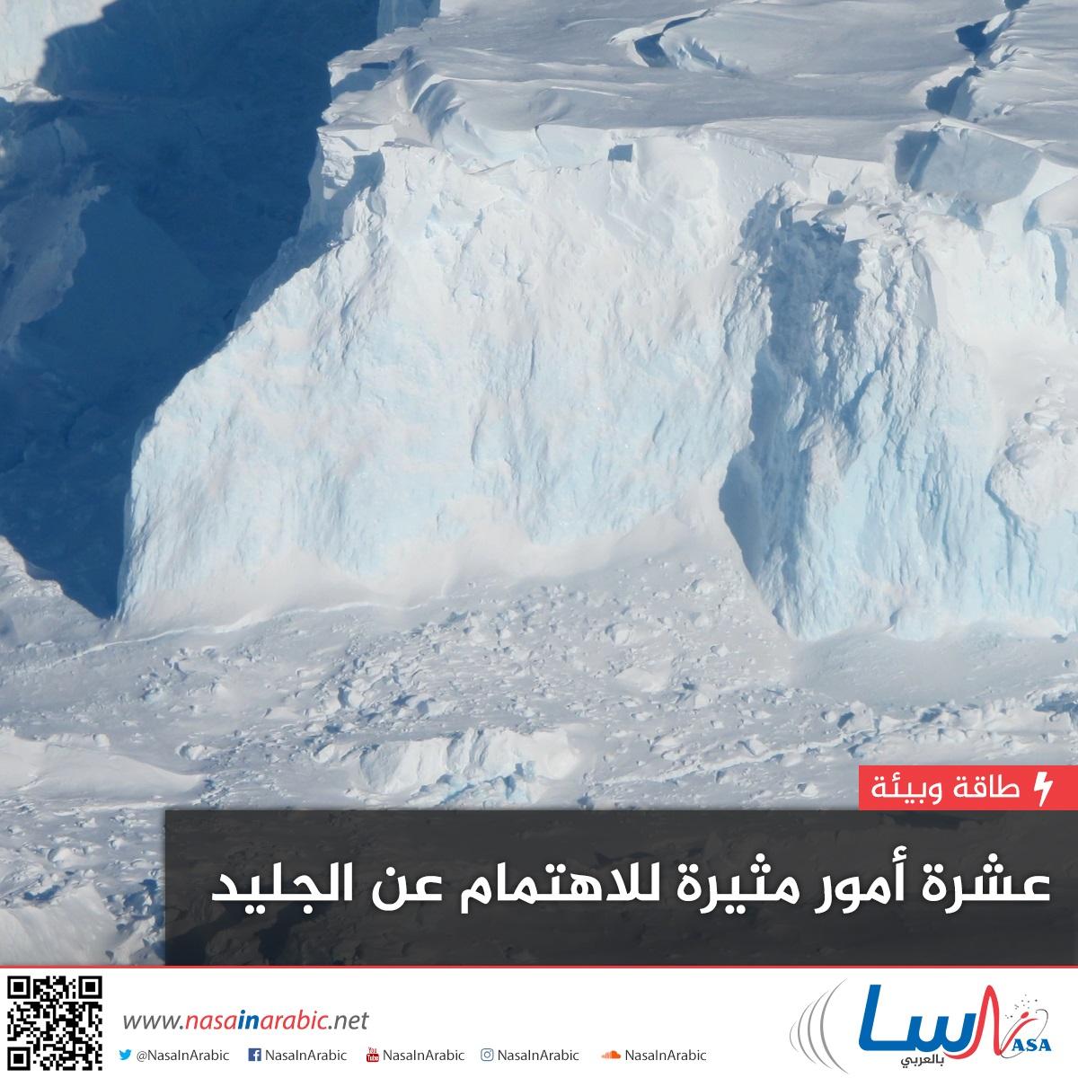 10 أمور مثيرة للاهتمام عن الجليد
