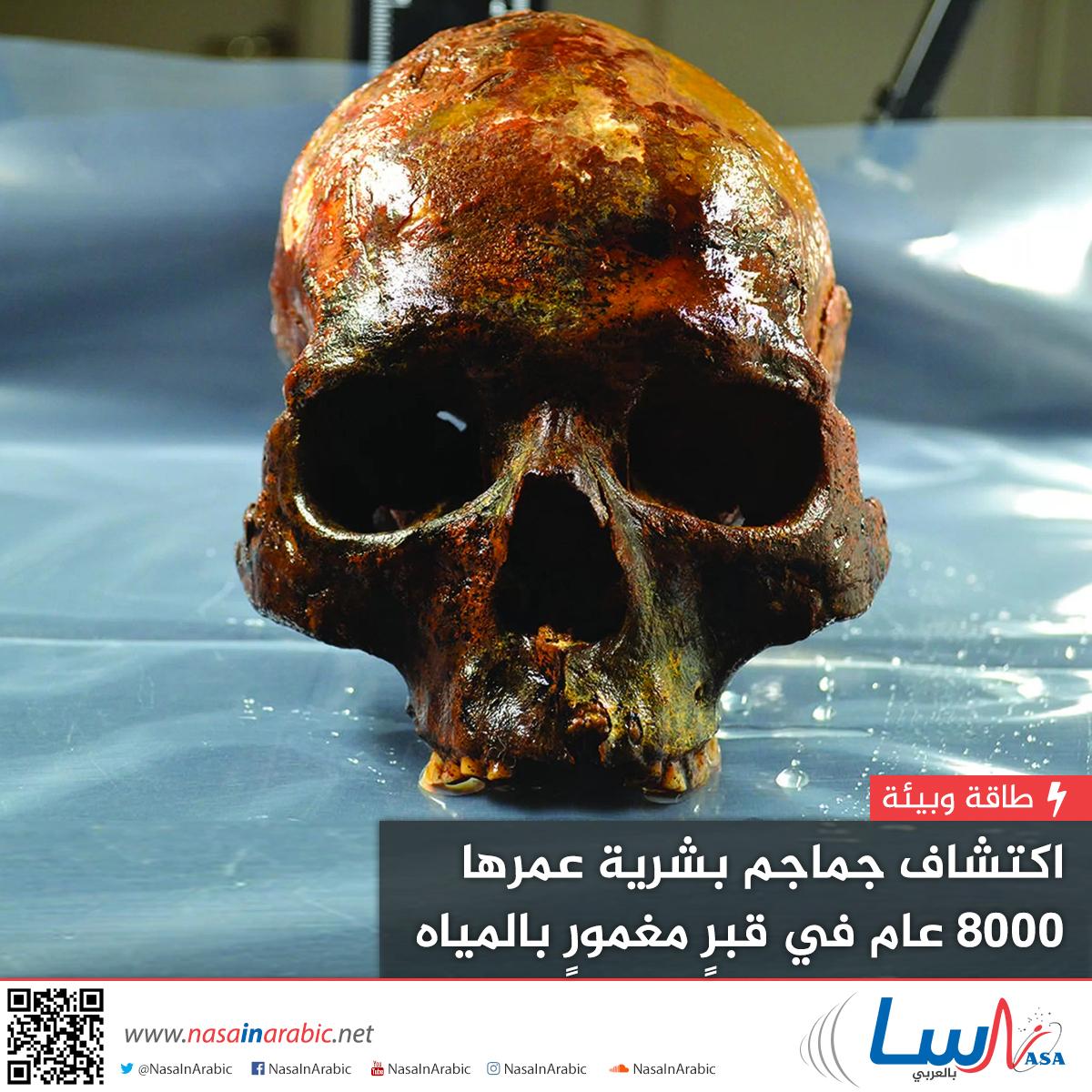 اكتشاف جماجم بشرية عمرها 8000 عام في قبر مغمور بالمياه
