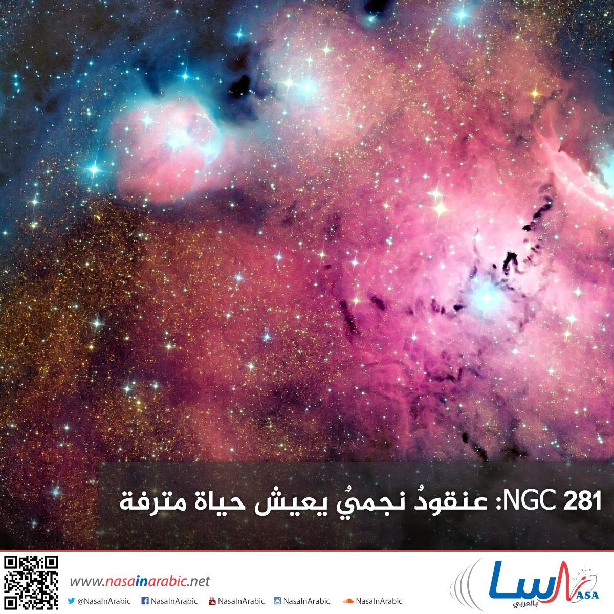 NGC 281: عنقودٌ نجميٌ يعيش حياة مترفة