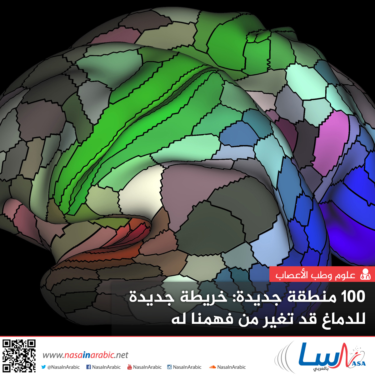 100 منطقة جديدة: خريطة جديدة للدماغ قد تغير من فهمنا له