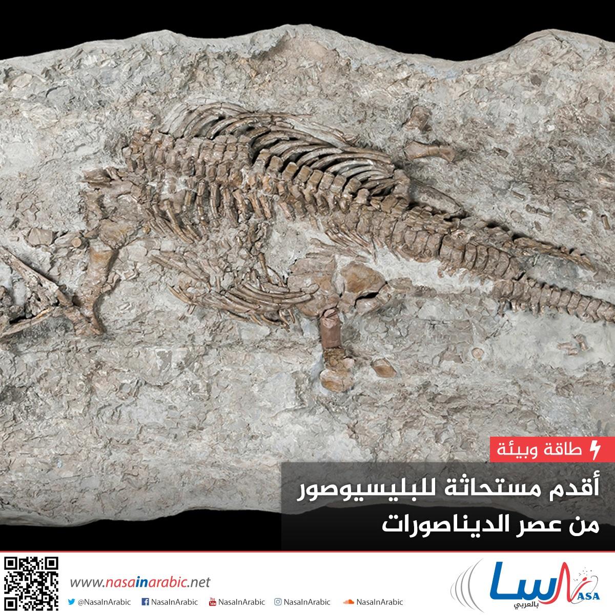 أقدم مستحاثة للبليسيوصور من عصر الديناصورات