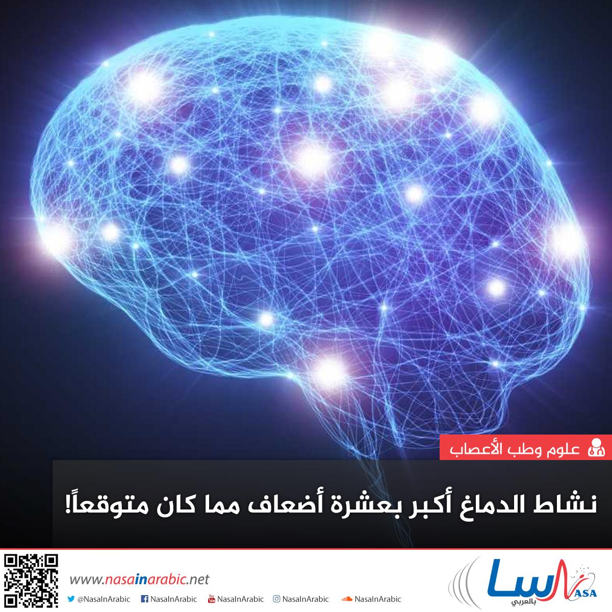 نشاط الدماغ أكبر بعشرة أضعاف مما كان متوقعًا!