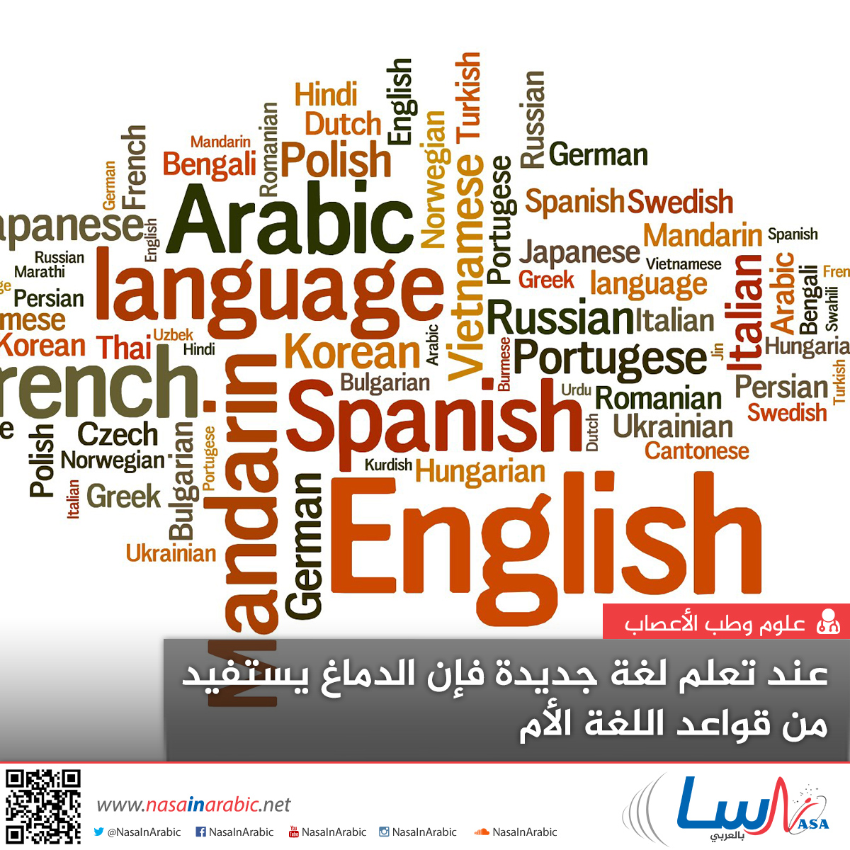عند تعلم لغة جديدة فإن الدماغ يستفيد من قواعد اللغة الأم