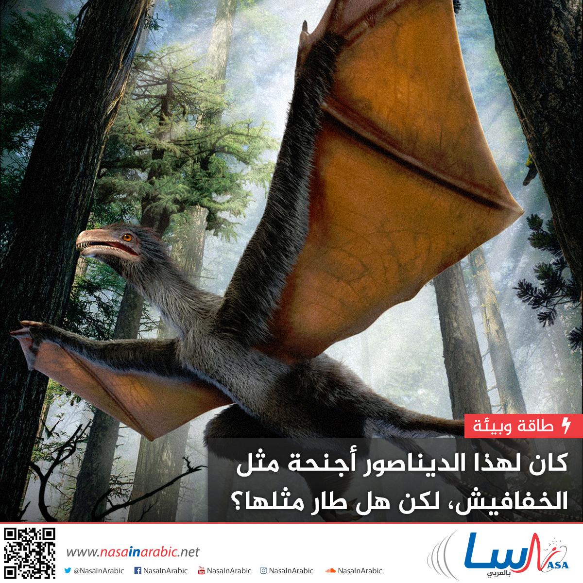 كان لهذا الديناصور أجنحة مثل الخفافيش، لكن هل طار مثلها؟