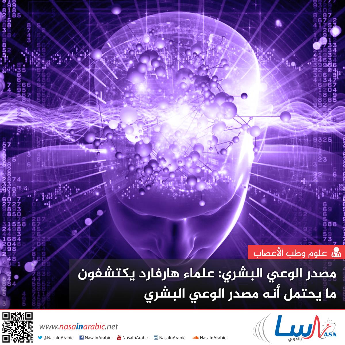 علماء هارفارد يكتشفون ما يحتمل أنه مصدر الوعي البشري