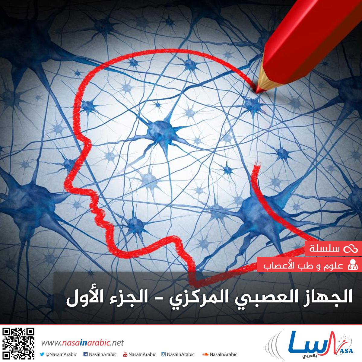 الجهاز العصبي المركزي - الجزء الأول